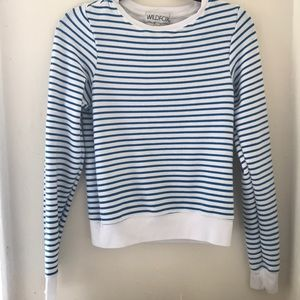 Striped Wildfox Sweatshirt